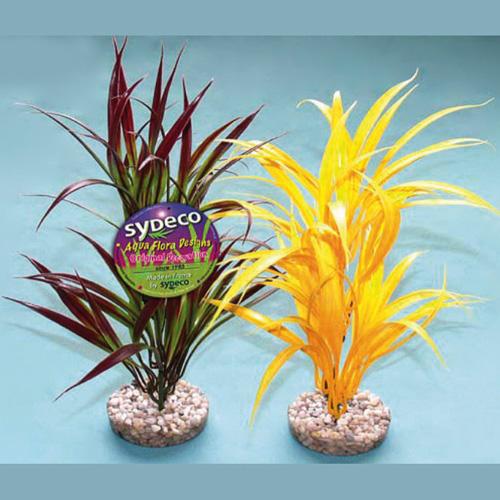 Pianta acquario arrowhead plant for Piante finte per acquario