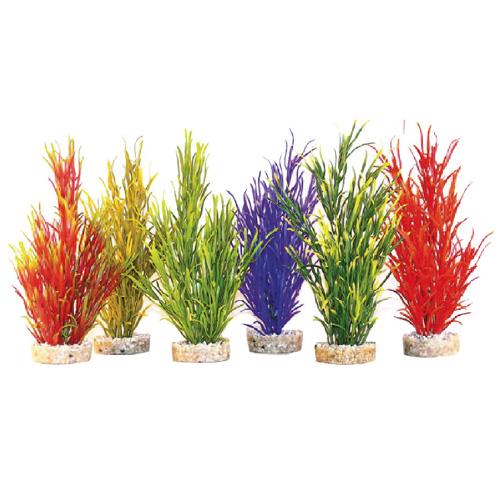 Pianta acquario sea grass m 496138 for Piante per acquario online