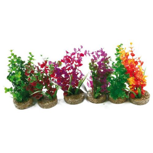 Pianta acquario magic garden m 8011001 for Piante per acquario online