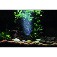 Luce Acquario Led Light Blu