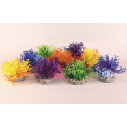Decorazione Coral Reef 226202