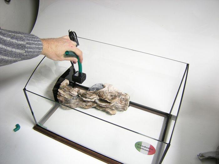 Come montare un 39 isola filtro per tartarughe for Pompa tartarughiera